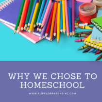 445f97c97f6f Homeschooling Archives - Flip Flop Parenting